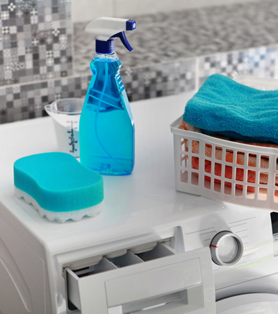 <h2>Detergents & Cleaning Aids</h2>