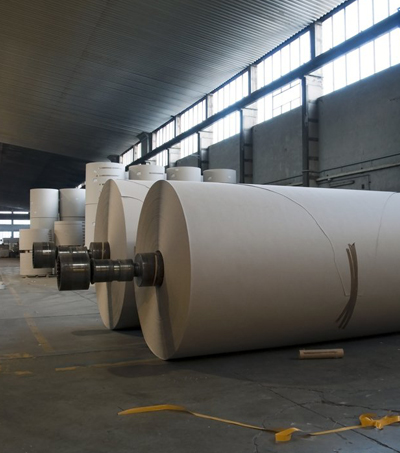 <h2>Pulp & Paper Processing</h2>